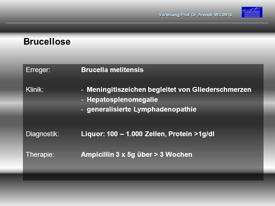 Brucellose Erreger: Brucella melitensis Klinik: