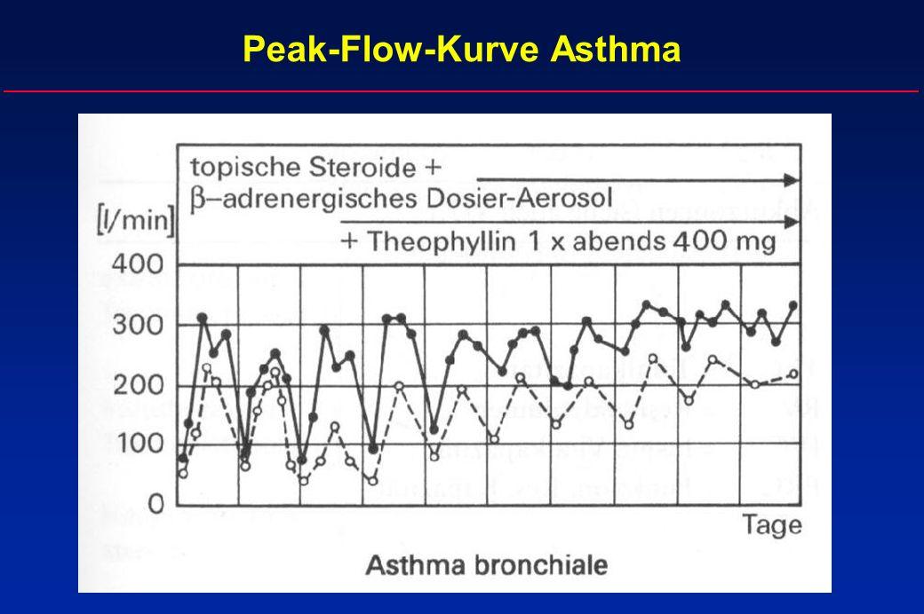 Peak-Flow-Kurve Asthma