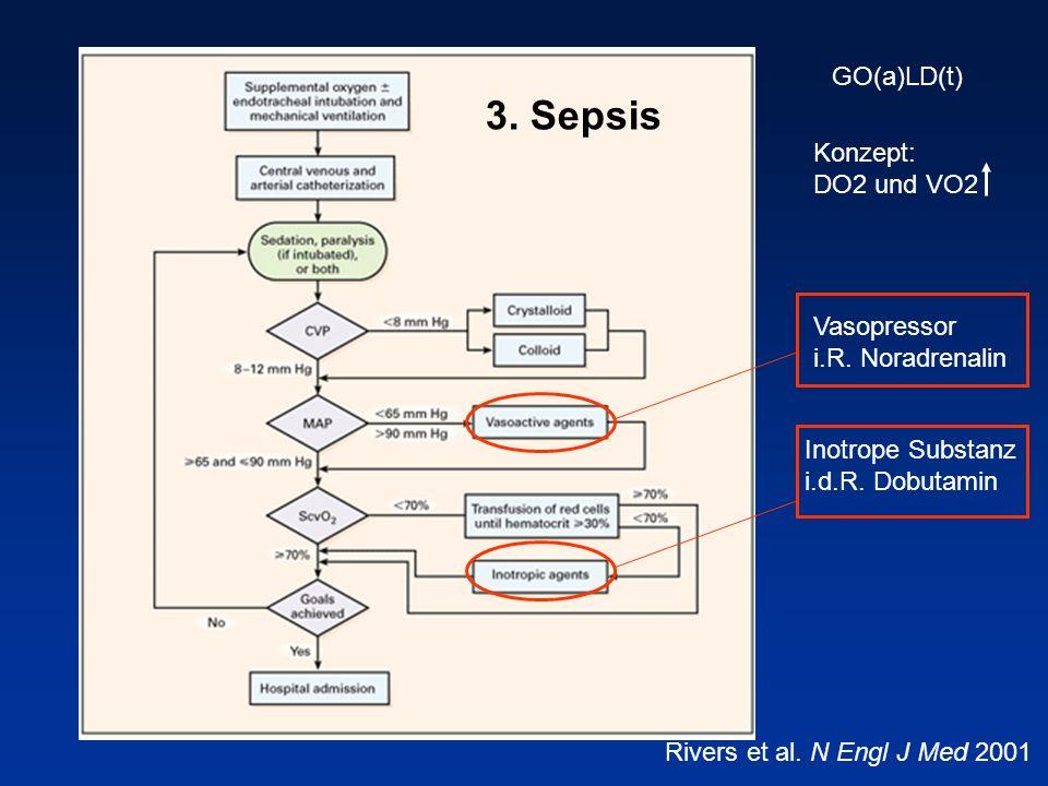 3. Sepsis GO(a)LD(t) Konzept: DO2 und VO2