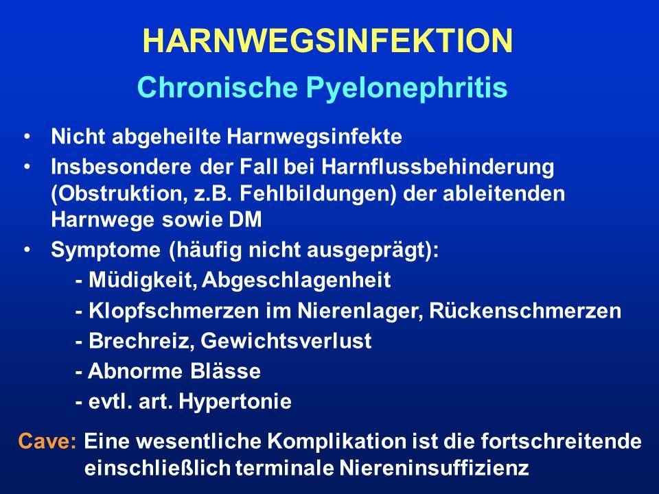HARNWEGSINFEKTION Chronische Pyelonephritis