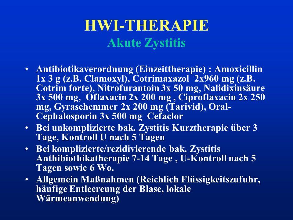 HWI-THERAPIE Akute Zystitis