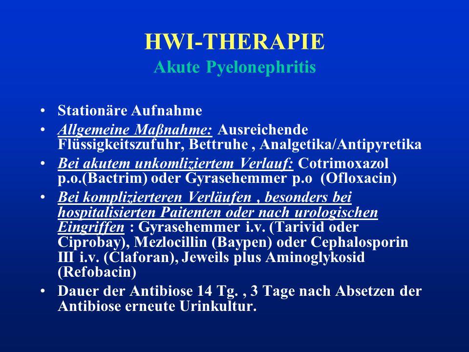 HWI-THERAPIE Akute Pyelonephritis