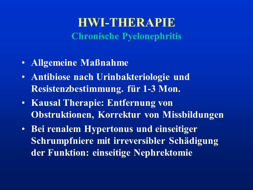 HWI-THERAPIE Chronische Pyelonephritis