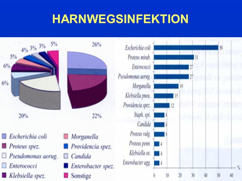HARNWEGSINFEKTION