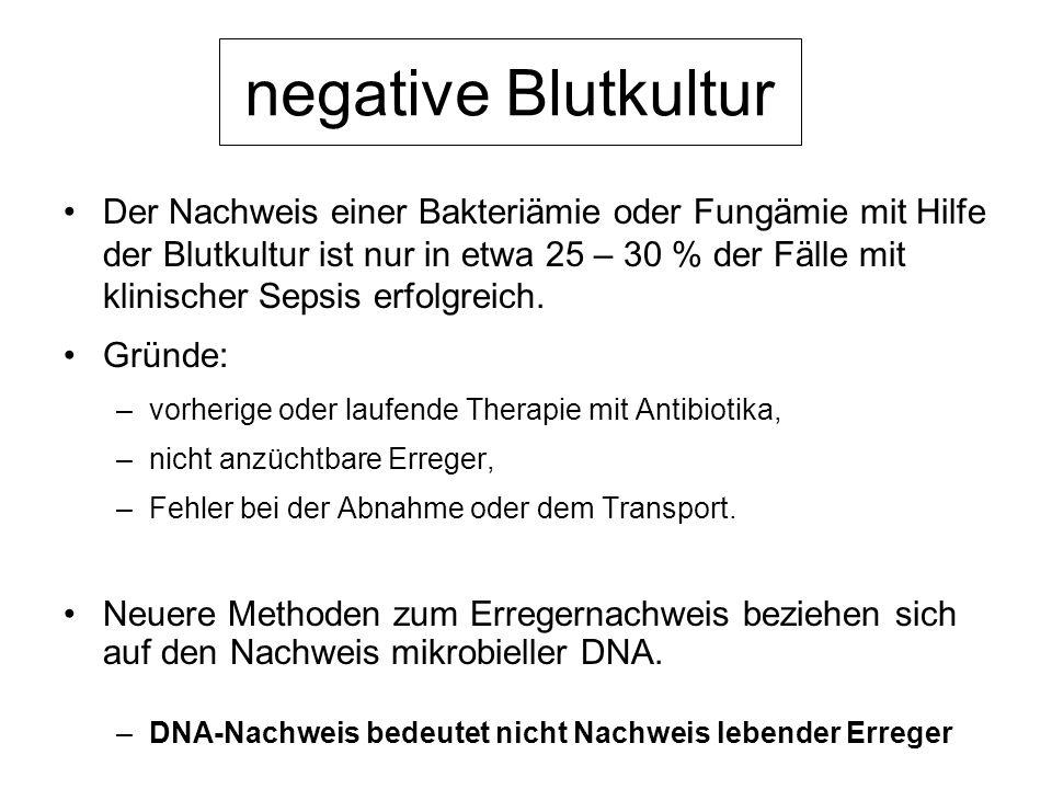 negative Blutkultur