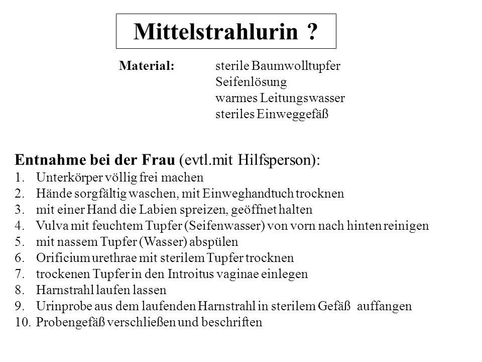 Mittelstrahlurin Entnahme bei der Frau (evtl.mit Hilfsperson):