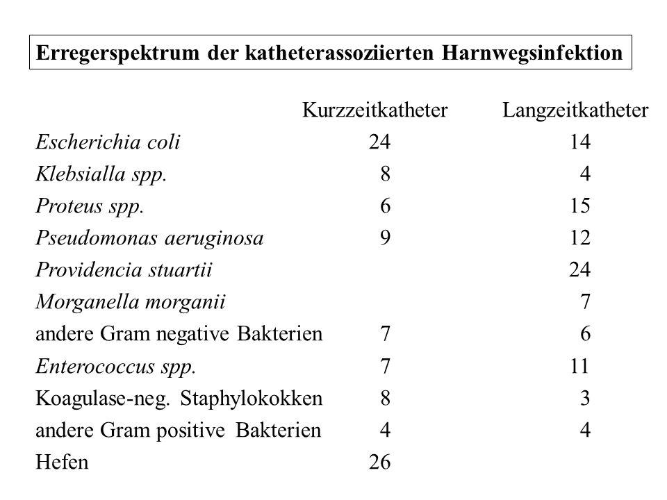 Erregerspektrum der katheterassoziierten Harnwegsinfektion