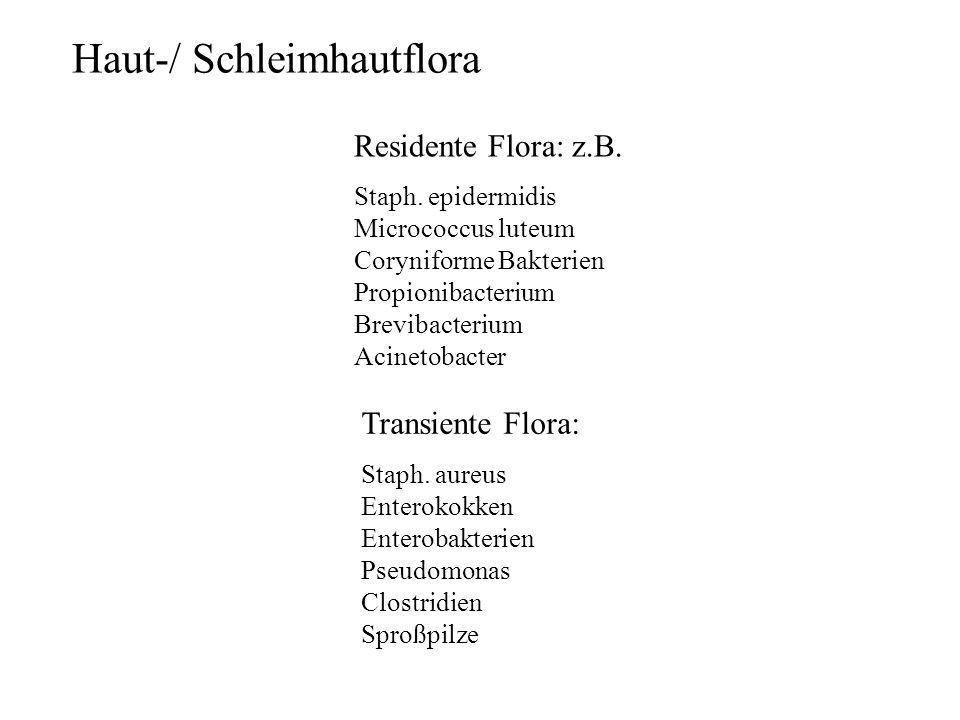 Haut-/ Schleimhautflora