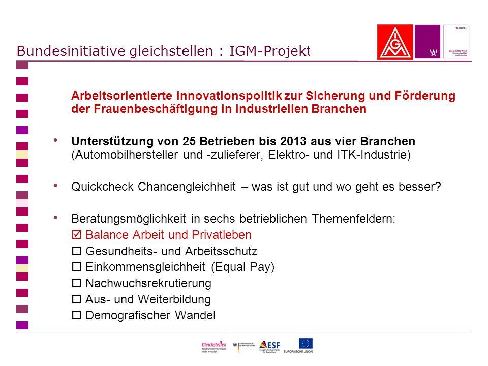 Bundesinitiative gleichstellen : IGM-Projekt