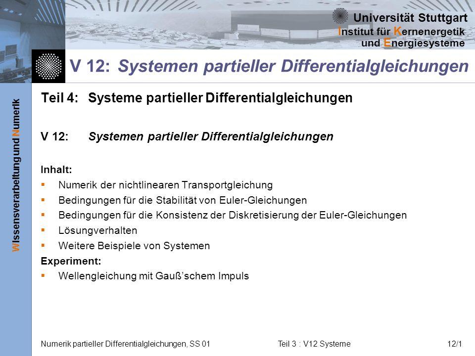 V 12: Systemen partieller Differentialgleichungen