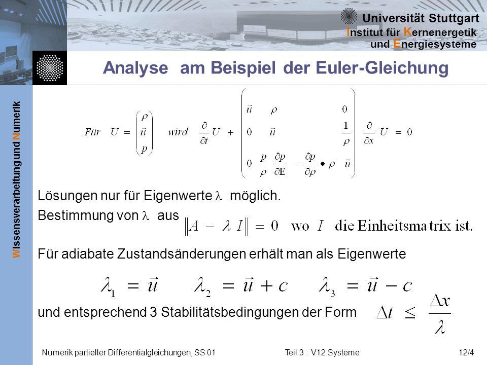 Analyse am Beispiel der Euler-Gleichung
