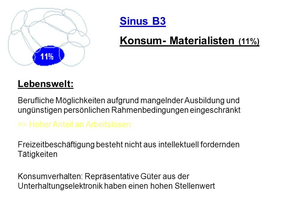 Konsum- Materialisten (11%)