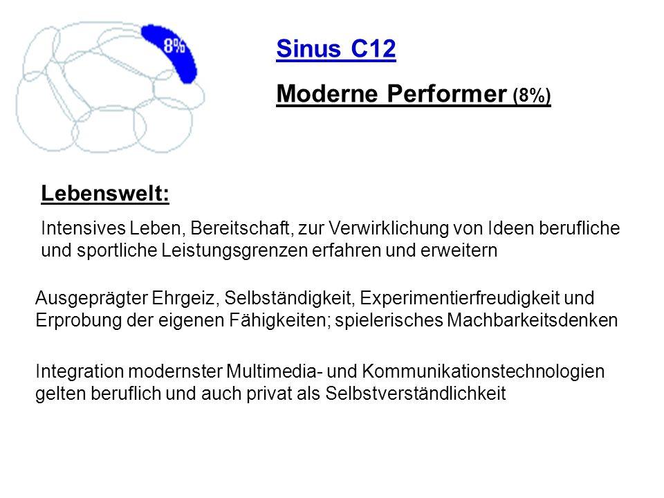 Sinus C12 Moderne Performer (8%) Lebenswelt: