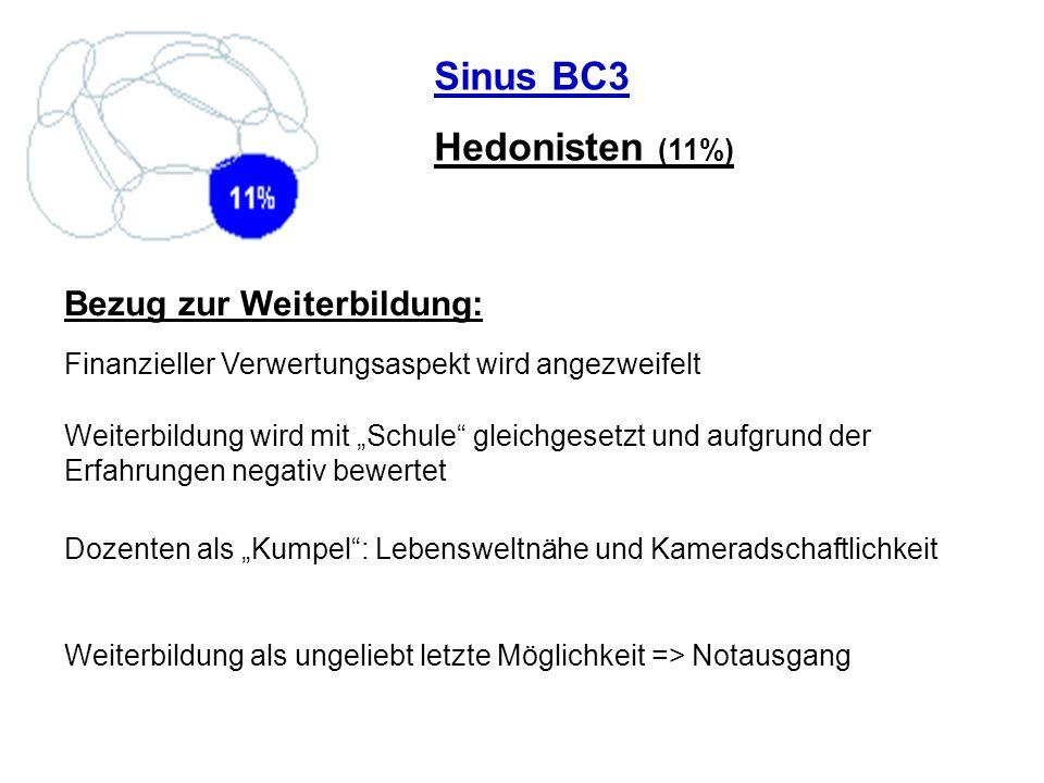Sinus BC3 Hedonisten (11%) Bezug zur Weiterbildung: