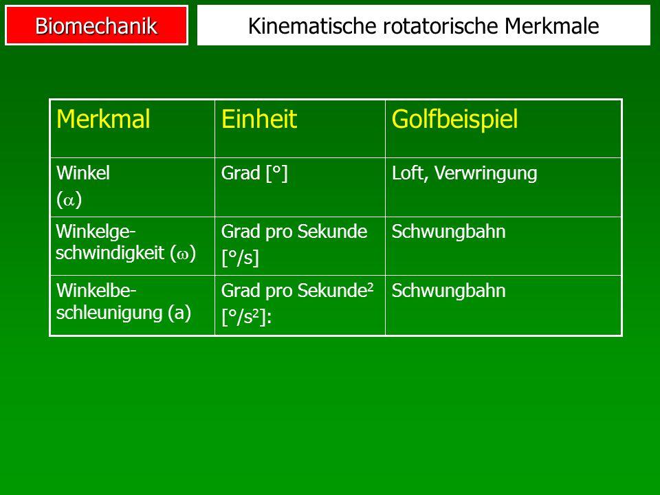 Kinematische rotatorische Merkmale