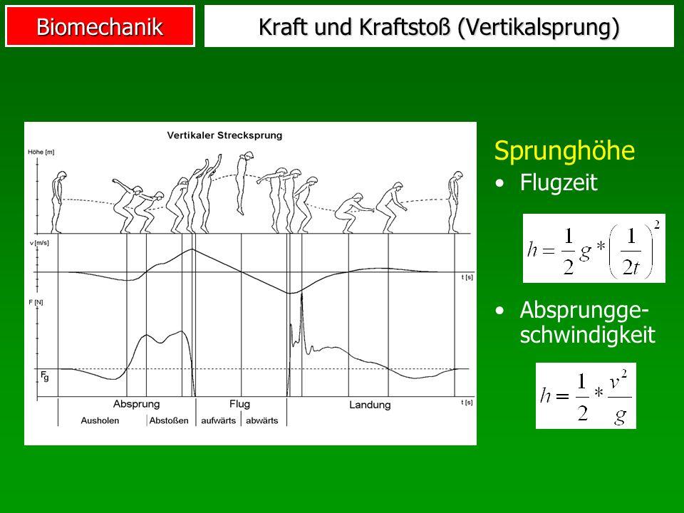 Kraft und Kraftstoß (Vertikalsprung)