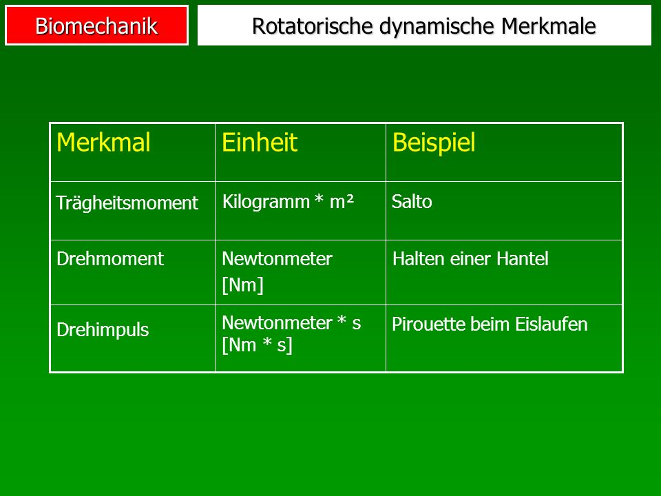 Rotatorische dynamische Merkmale