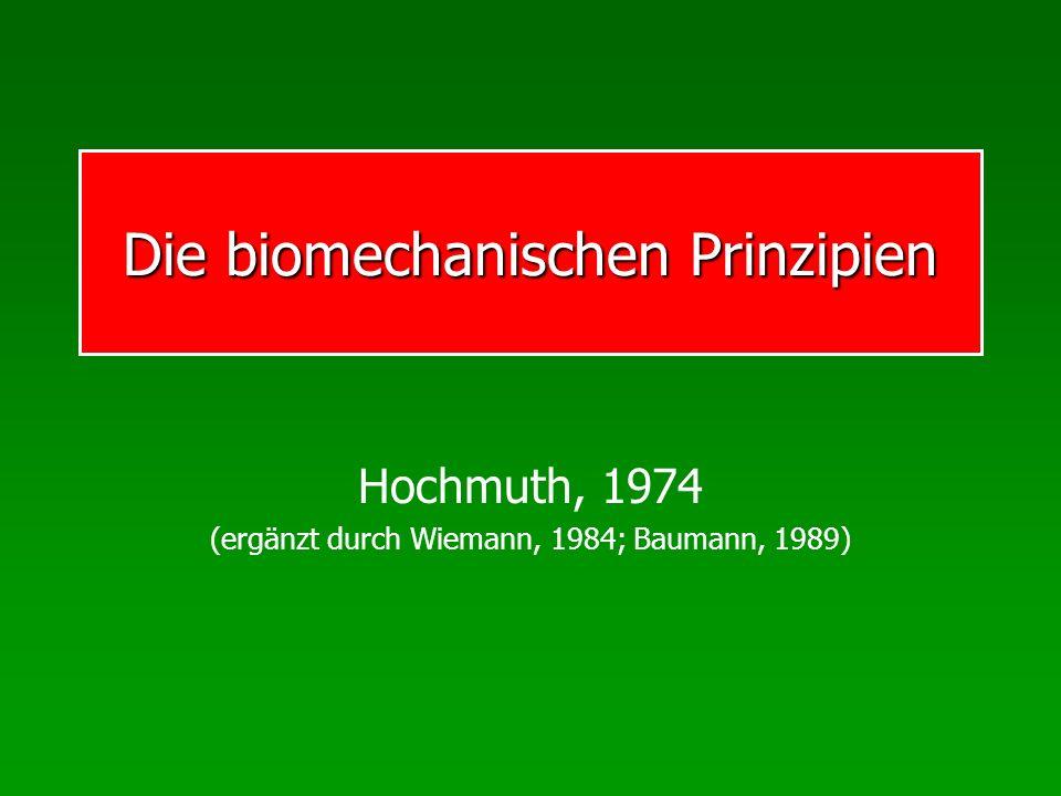 Die biomechanischen Prinzipien