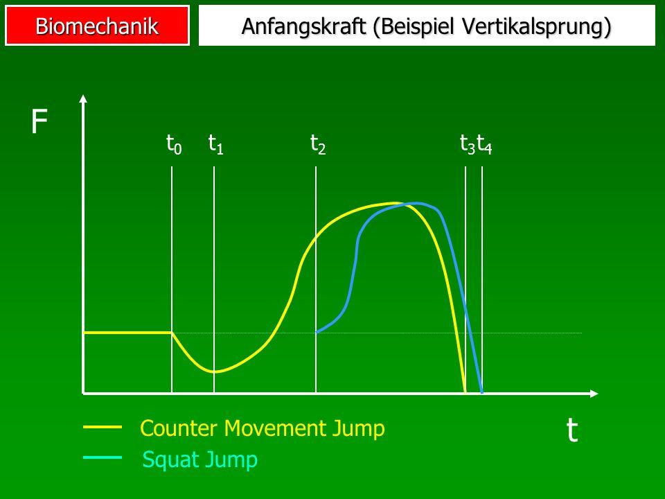 Anfangskraft (Beispiel Vertikalsprung)