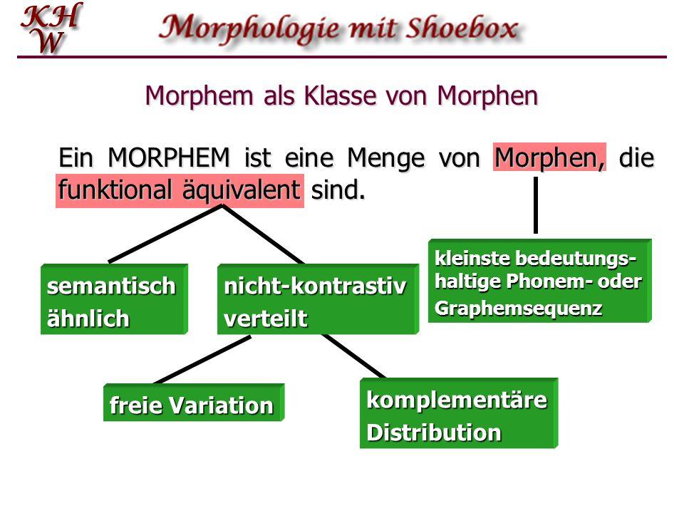 Morphem als Klasse von Morphen