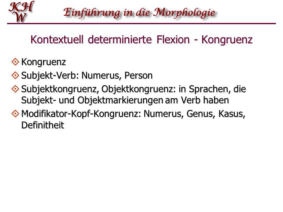 Kontextuell determinierte Flexion - Kongruenz