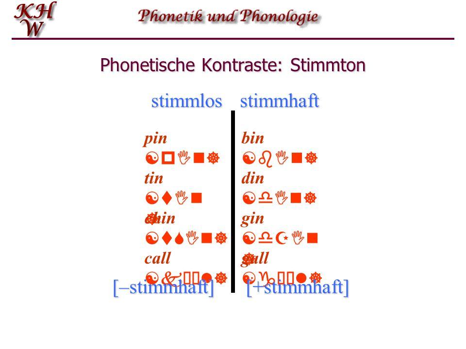 Phonetische Kontraste: Stimmton
