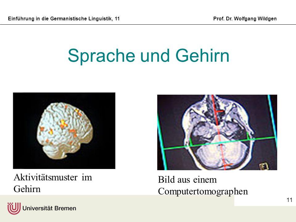 Sprache und Gehirn Aktivitätsmuster im Gehirn