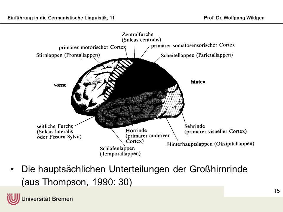 Die hauptsächlichen Unterteilungen der Großhirnrinde (aus Thompson, 1990: 30)
