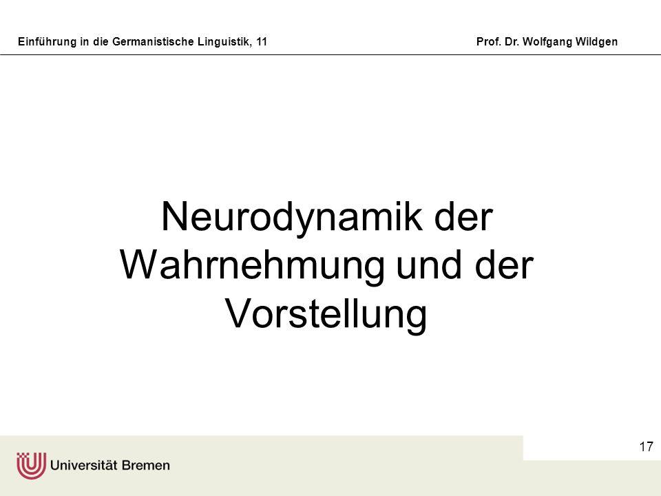 Neurodynamik der Wahrnehmung und der Vorstellung