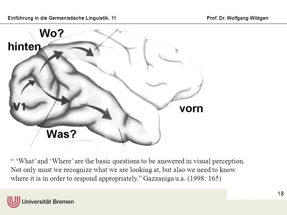 'What' and 'Where' are the basic questions to be answered in visual perception.