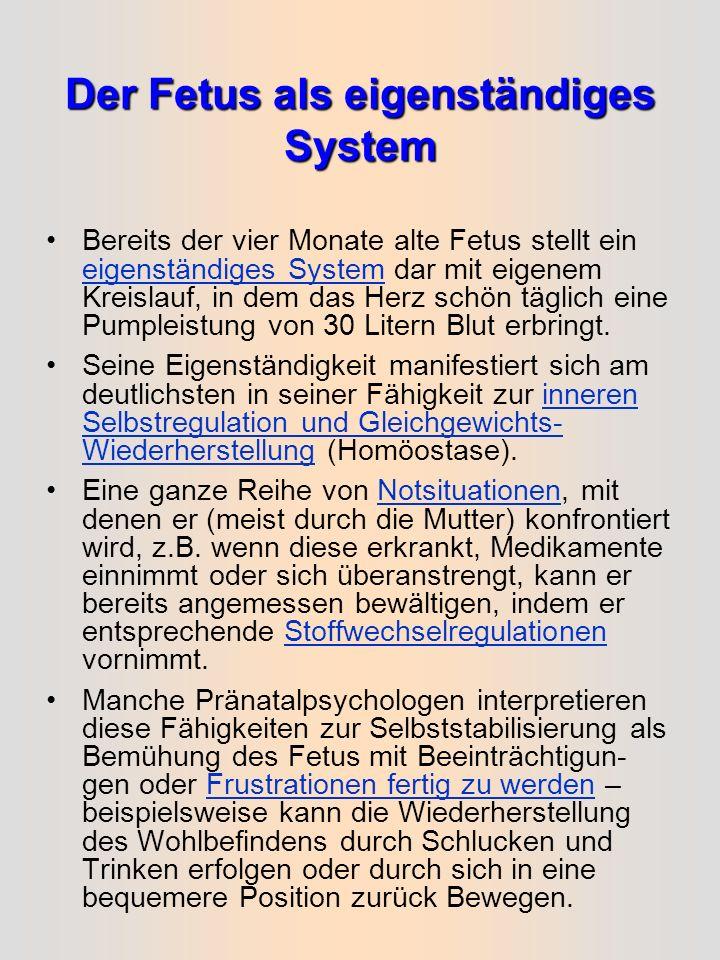 Der Fetus als eigenständiges System