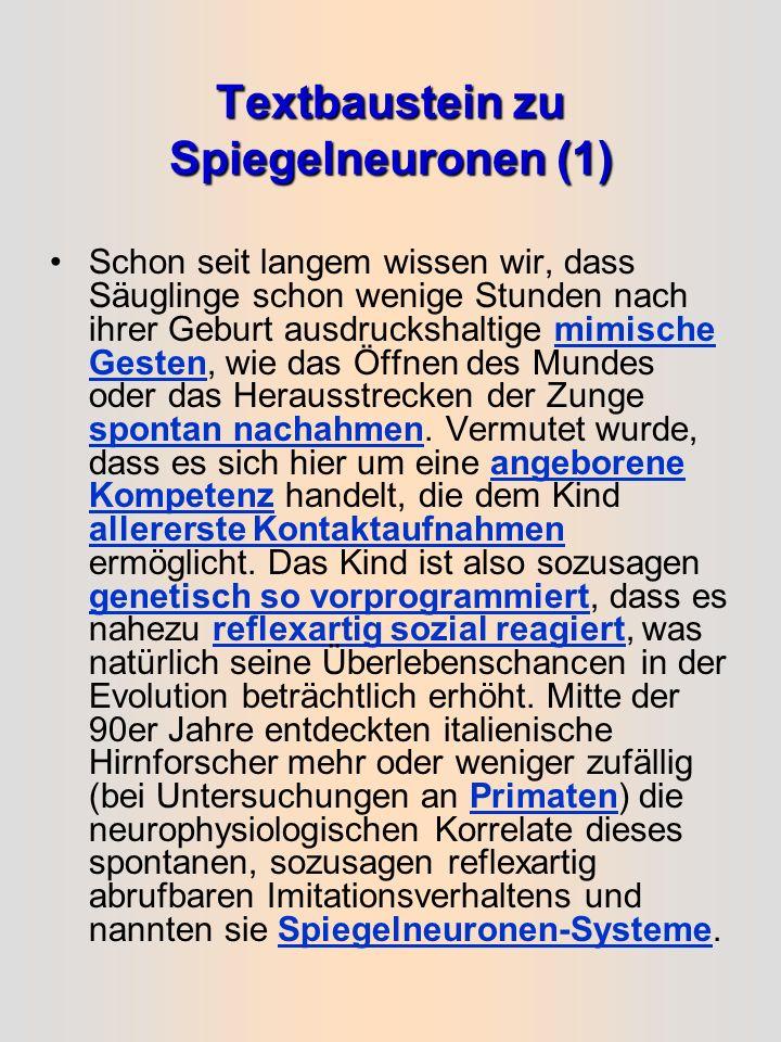 Textbaustein zu Spiegelneuronen (1)