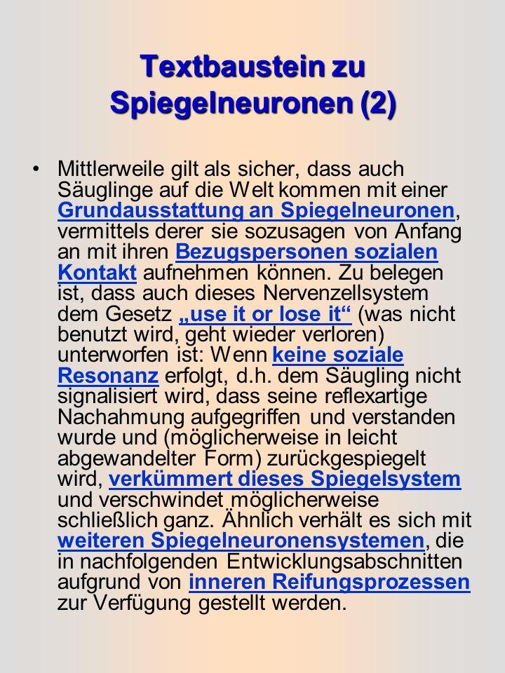 Textbaustein zu Spiegelneuronen (2)