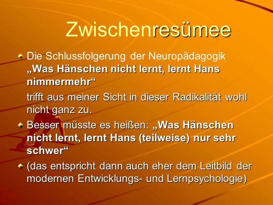 """ZwischenresümeeDie Schlussfolgerung der Neuropädagogik """"Was Hänschen nicht lernt, lernt Hans nimmermehr"""