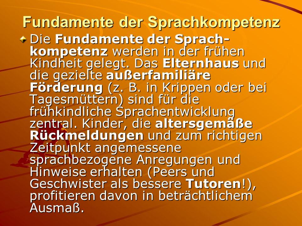 Fundamente der Sprachkompetenz