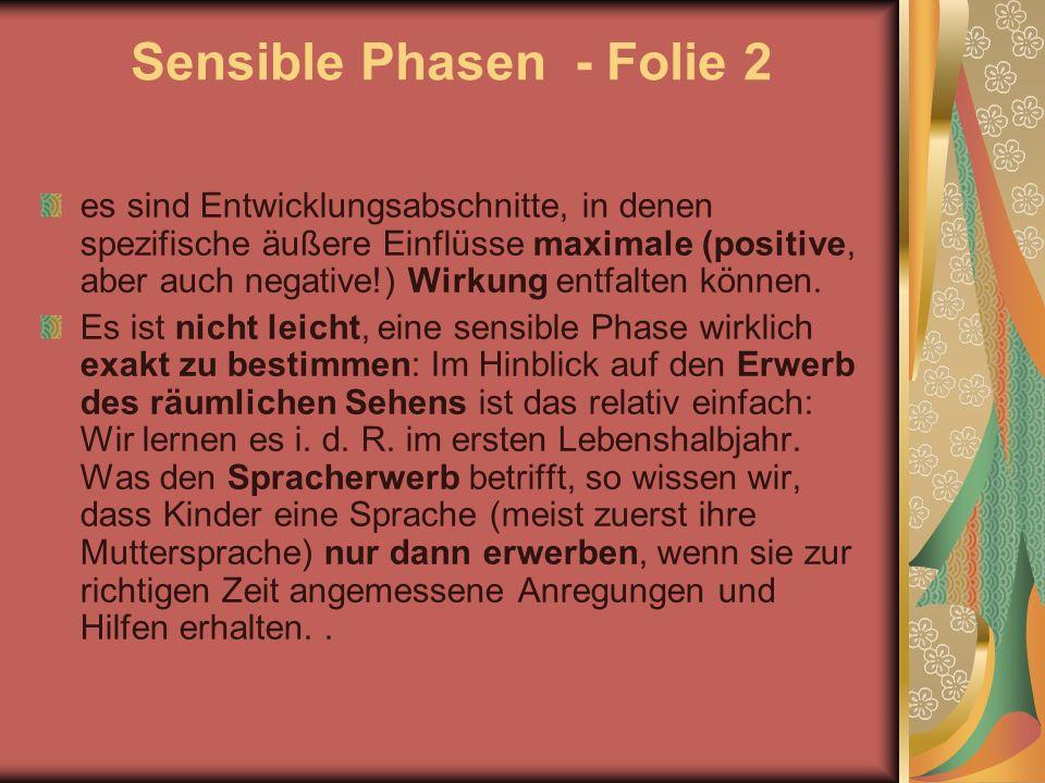 Sensible Phasen - Folie 2