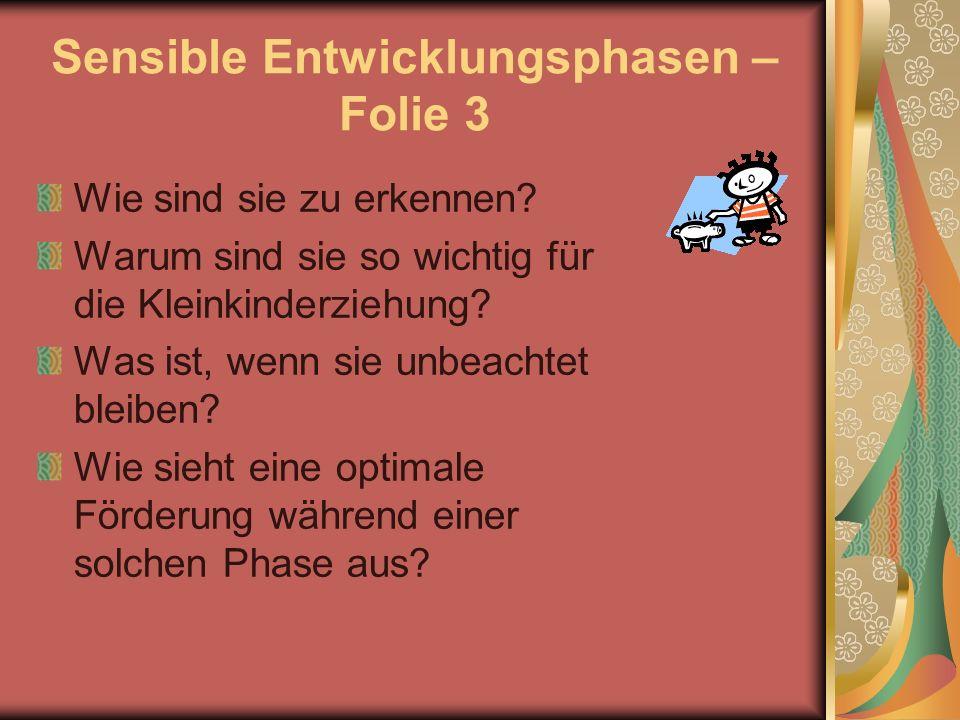Sensible Entwicklungsphasen – Folie 3