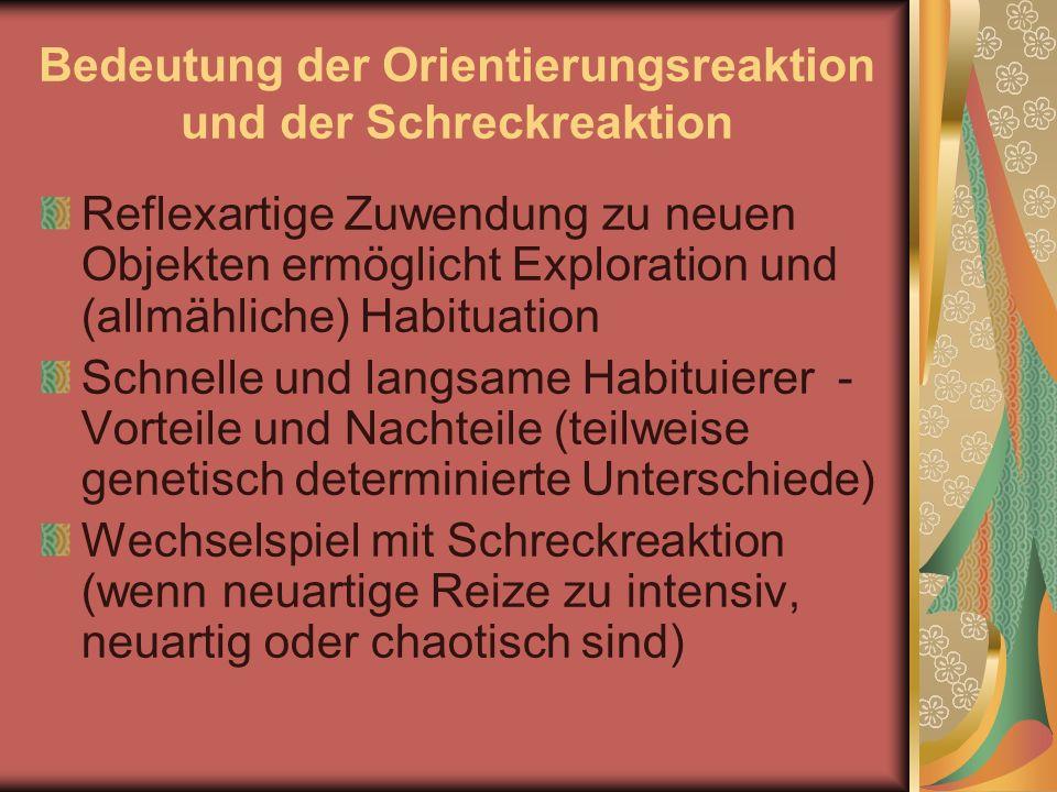Bedeutung der Orientierungsreaktion und der Schreckreaktion