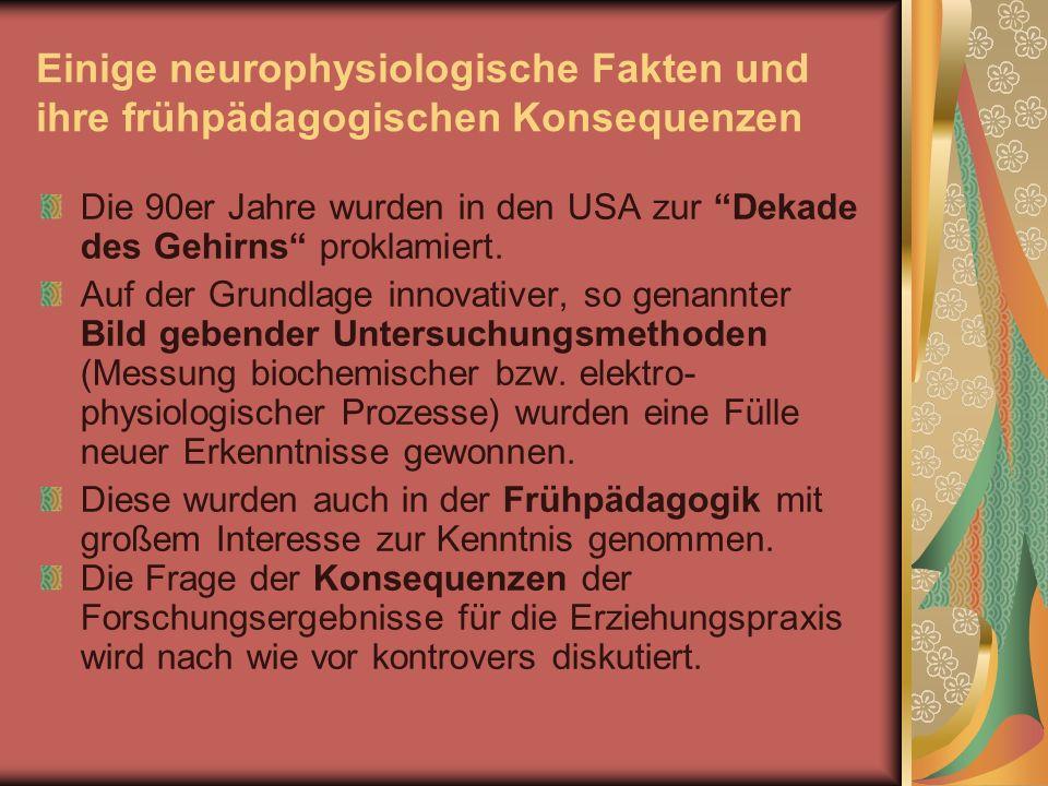 Einige neurophysiologische Fakten und ihre frühpädagogischen Konsequenzen