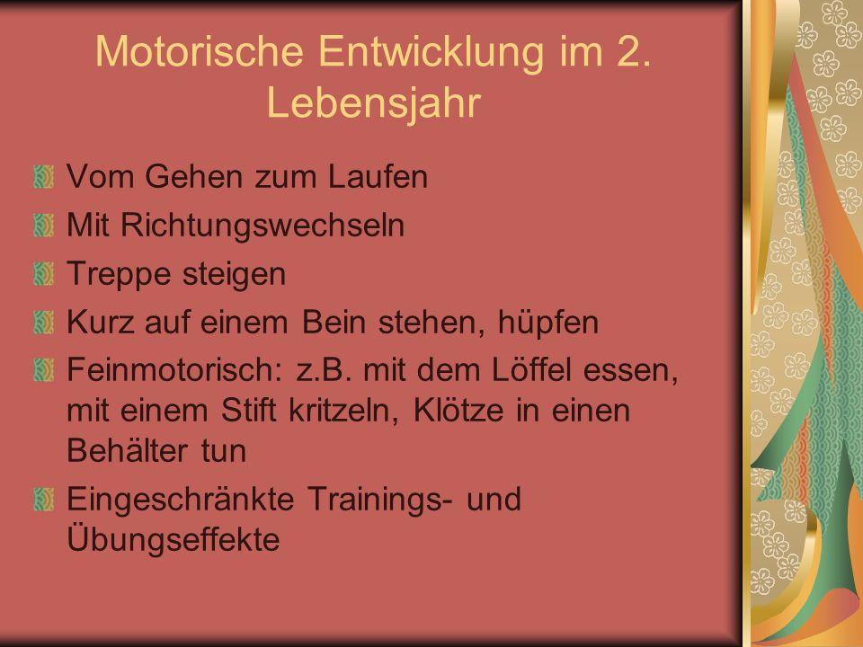 Motorische Entwicklung im 2. Lebensjahr