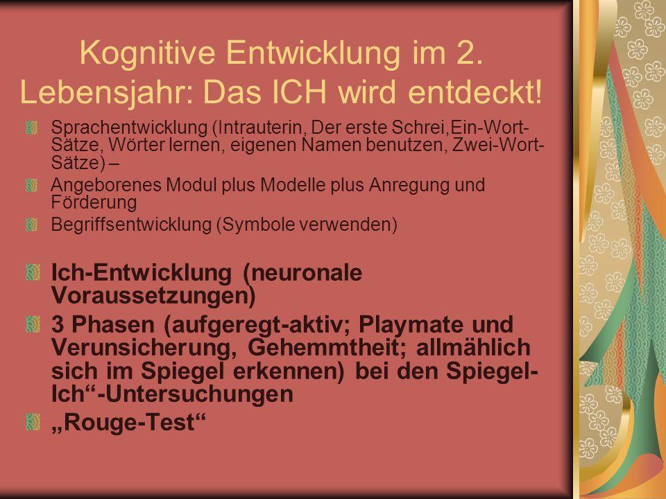 Kognitive Entwicklung im 2. Lebensjahr: Das ICH wird entdeckt!