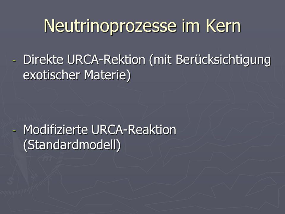 Neutrinoprozesse im Kern