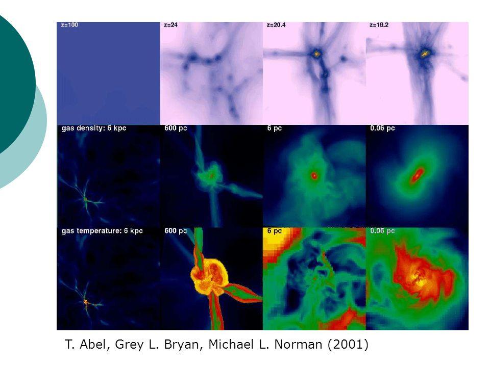 Die ersten Sterne T. Abel, Grey L. Bryan, Michael L. Norman (2001)