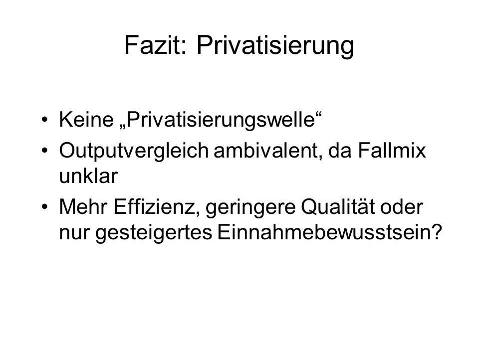 Fazit: Privatisierung