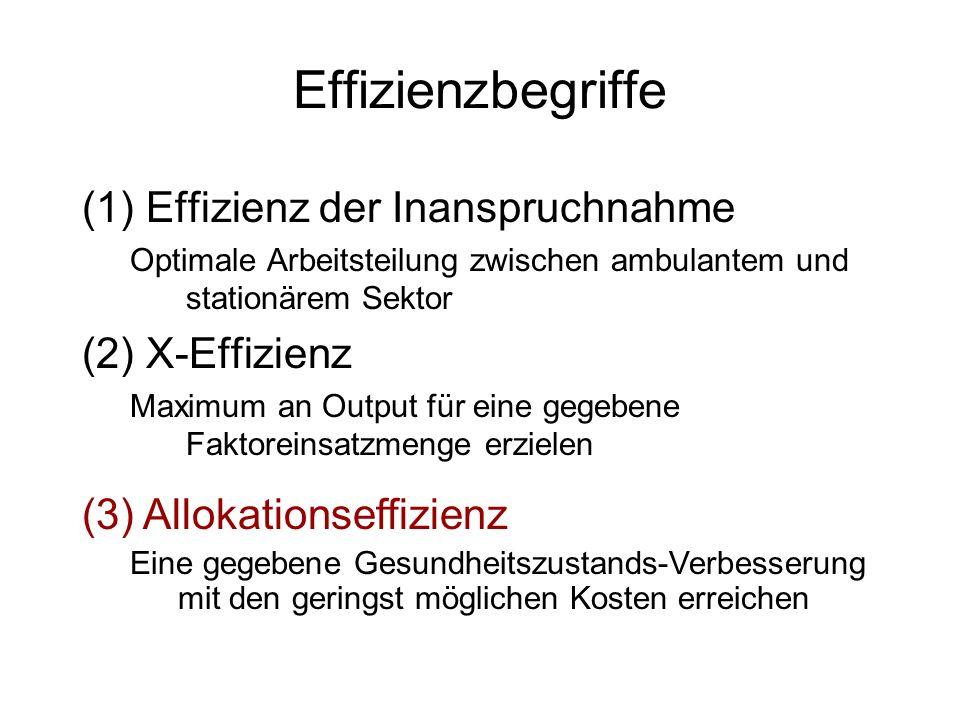Effizienzbegriffe Effizienz der Inanspruchnahme X-Effizienz