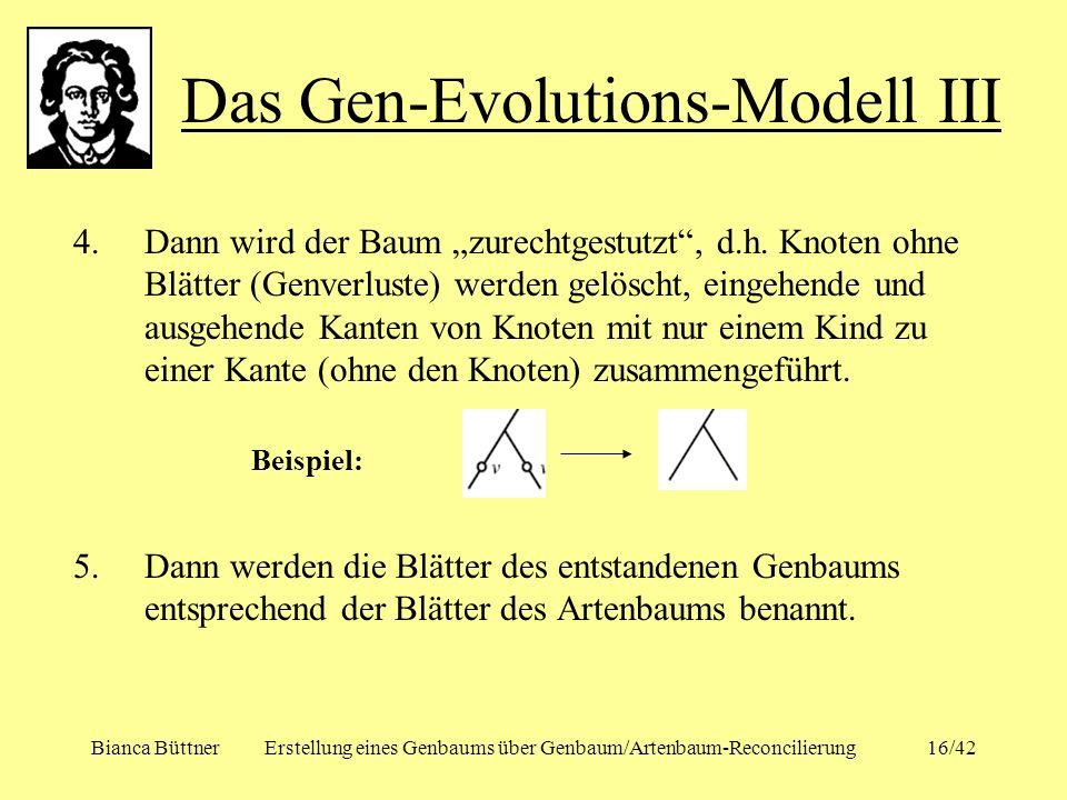 Das Gen-Evolutions-Modell III