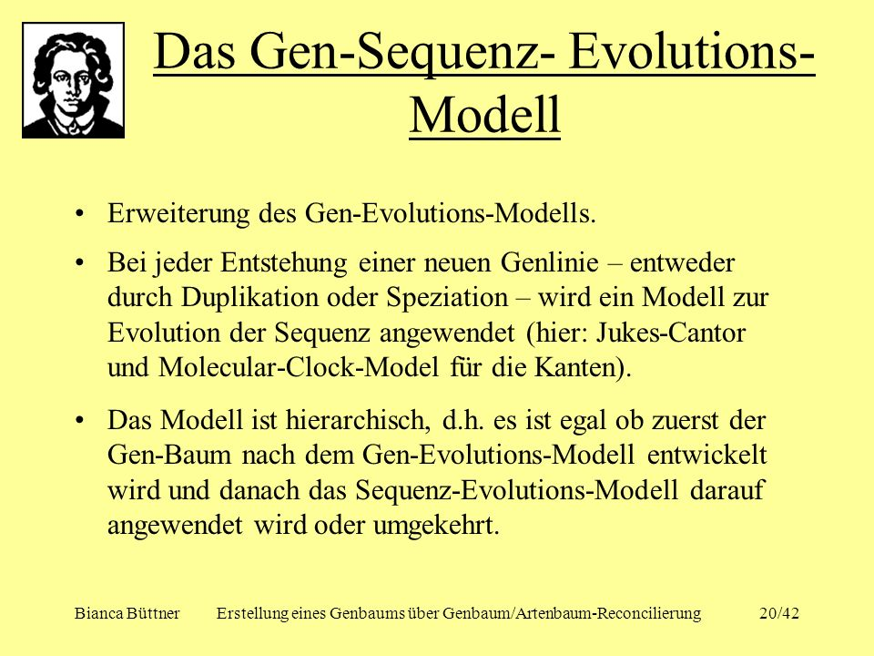 Das Gen-Sequenz- Evolutions-Modell