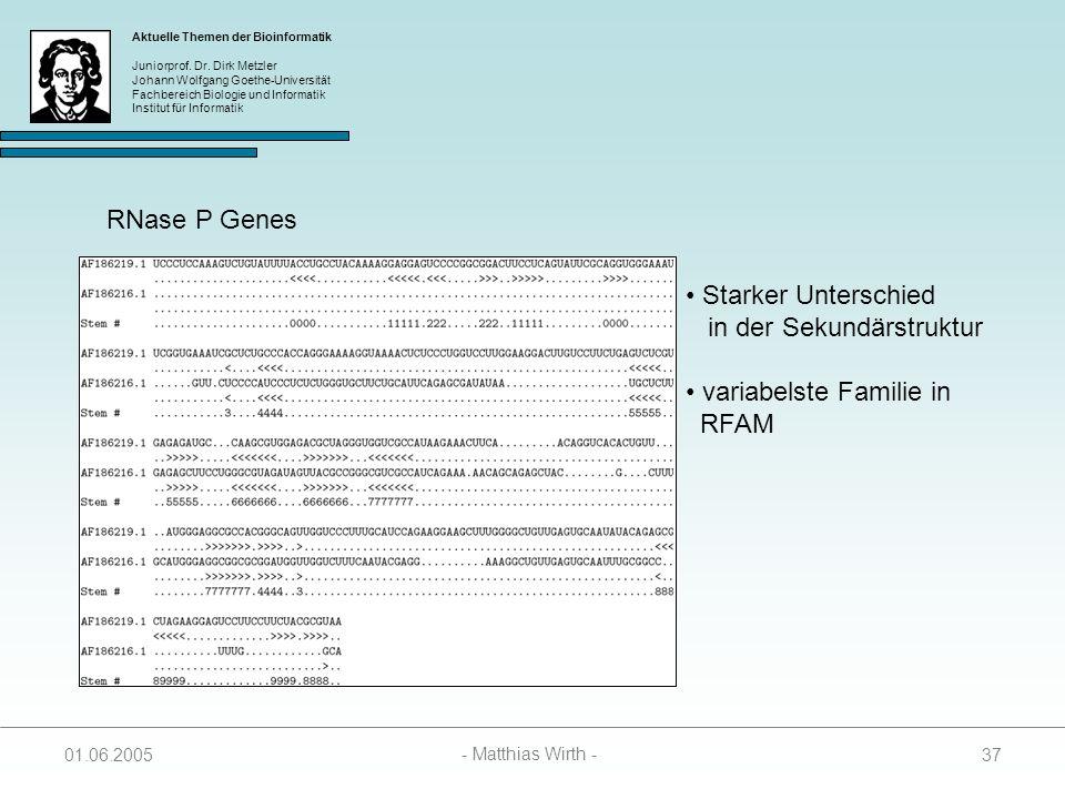in der Sekundärstruktur variabelste Familie in RFAM
