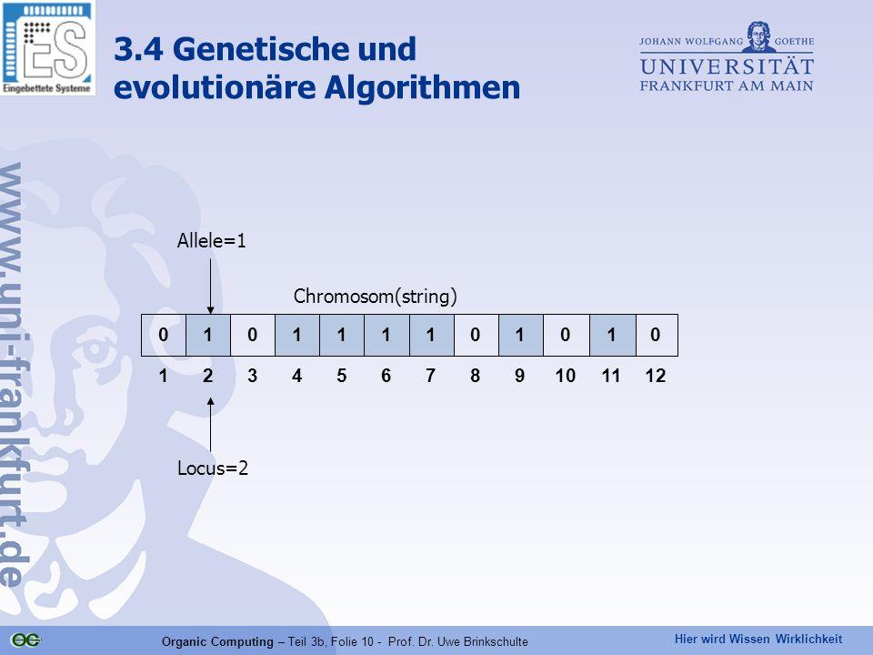 Organic Computing – Teil 3b, Folie 10 - Prof. Dr. Uwe Brinkschulte