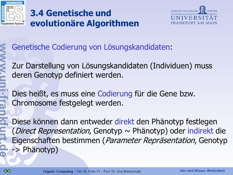 Organic Computing – Teil 3b, Folie 11 - Prof. Dr. Uwe Brinkschulte
